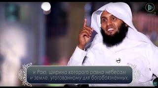 Как претворить в жизнь богобоязненность? | Ислам в новом свете