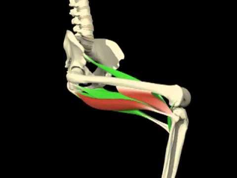 Comprimir dolores de espalda de valeriana