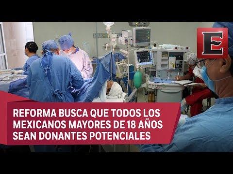 Punto y coma: La donación automática de órganos en México