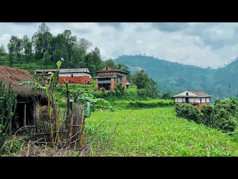 Amazing lifestyle in Rural Nepal | Life in Village Nepal | Rural life in South Asia [4K]