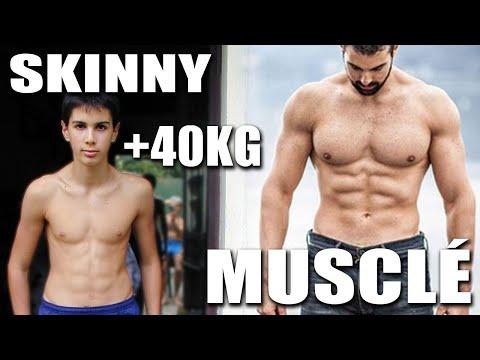 Sokratitelnye les albumines du muscle