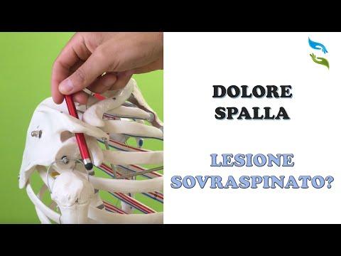 Alexander Bonin eliminare toracica osteocondrosi torrente