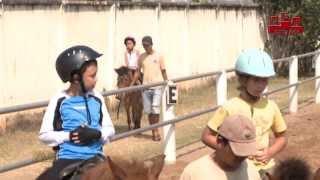 Học cưỡi ngựa ở TPHCM