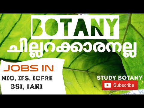CAREER IN BSc. BOTANY // MSc , JOBS, SALARY, BEST COLLEGES. // Study Botany