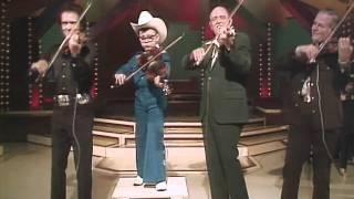 Fidlle Breakdown - Merle Haggard