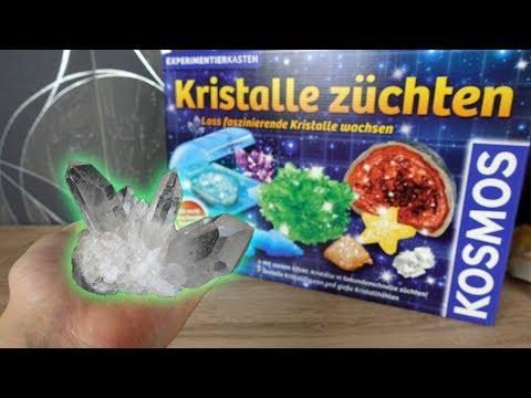 Kristalle selber züchten😳! - Funktioniert das?