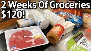 $120 For 2 Weeks Of Groceries! Groceries On A Budget For 4!