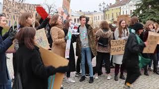 Młodzieżowy Strajk Klimatyczny w Krośnie