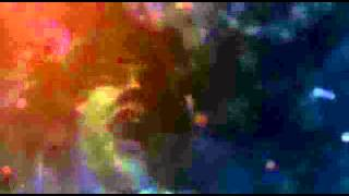 Video BASEMENT CONFINEMENT (brazil/czech rep.) ´confinement´  (officia