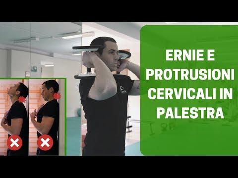 Quanti vertebre nella regione cervicale della colonna vertebrale