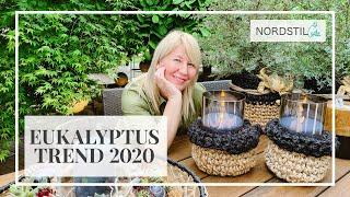 Eukalyptus Trend 2020