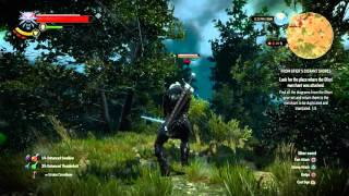 The Witcher 3: Hearts Of Stone - Hidden Treasure: Lvl 34 Harpy & Erynia Combat, Chest Key & Notebook