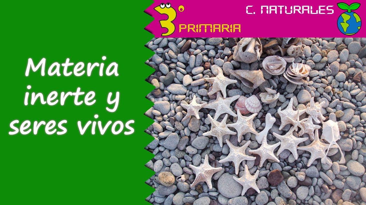 Ciencias de la Naturaleza. 3º Primaria. Tema 1. Materia inerte y seres vivos