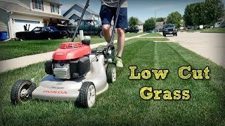 How To Mow Your Lawn Short and Keep It Green + Tnex Plant Growth Regulator