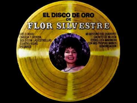 download lagu mp3 mp4 Flor Silvestre Discografia, download lagu Flor Silvestre Discografia gratis, unduh video klip Flor Silvestre Discografia
