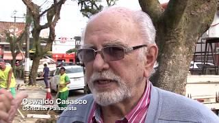 Santos inicia projeto-piloto para controlar raízes e proteger calçadas
