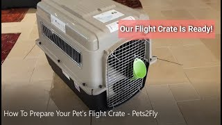 How To Prepare Your Pet's Flight Crate - Pets2Fly - Pet Travel