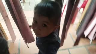 Trò Chơi Tham Quan Con Vật Kỳ Lạ ❤ ChiChi ToysReview TV ❤ Đồ Chơi Trẻ Em