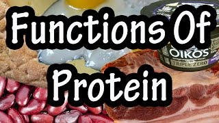 Functions Of Protein In The Body - How The Body Uses Proteins - Importance Of Protein