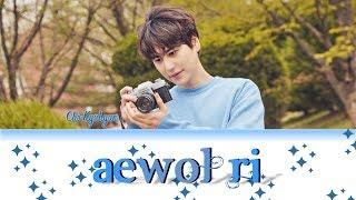 KYUHYUN 규현 '애월리 (Aewol Ri)' Lyrics Color Coded (HanRomEng) Easy Lyrics