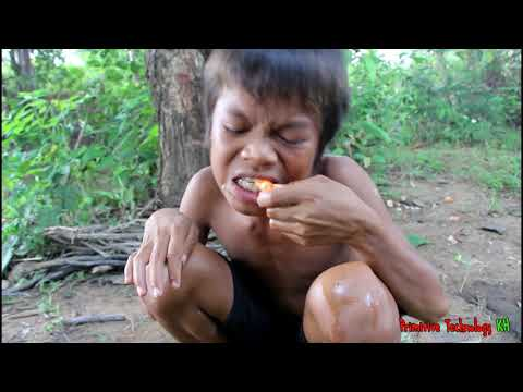 Primitive Technology - Eating delicious - Awesome cooking shrimp on a rock