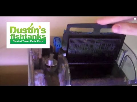 Aquarium filter review. 55 gallon aquarium with a Millennium filter