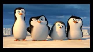 Crepypasta : como llegaron a central park los pinguinos de madagascar ( loquendo )