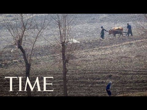 Worst Drought Since 2001 Hits North Korea's Food Supply, Could Lead To Serious Food Shortages | TIME