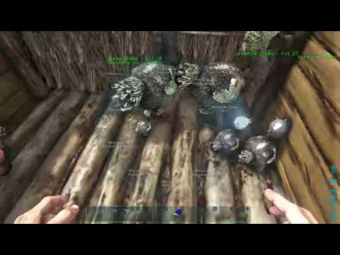 Ark Survival Evolved How To Reduce Imprint Timer, ITS FINALLY FIXED!