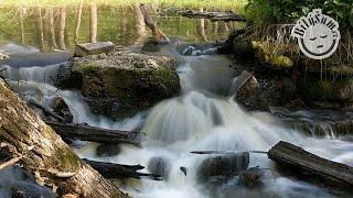 BílýŠum.cz - uklidňující zvuky přírody: řeka tekoucí přes jez a ptačí zpěv #1