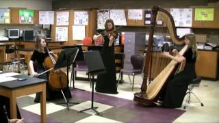 Violin, Cello and Harp perform Canon in D - Pachelbel