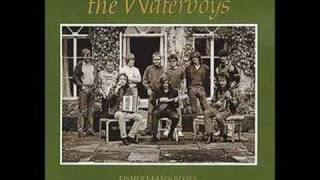 The Waterboys Stolen Child