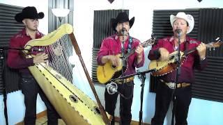 Conjunto De Arpa Grande (Quisiera Ser Pajarillo) Jilgueros Michoacános 2013
