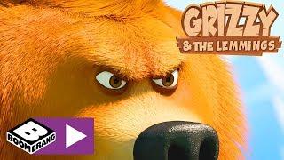 Grizzy I Lemingi | Puszczanie Latawca | Boomerang