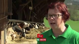 Steirische Landwirtschaft   Gentechnikfreie Milch