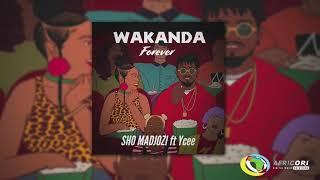 Sho Madjozi   Wakanda Forever [Feat. Ycee] (Official Audio)