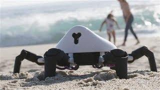 The Six-Legged Robot That Wants to Teach Programming