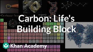 Grade 9 Science | Carbon as a building block of life | Khan Academy