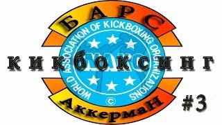 Чемпионат Одесской области. WAKO 24/02/2012