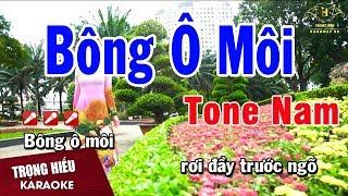 karaoke-bong-o-moi-tone-nam-nhac-song-trong-hieu