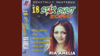 Download lagu Ria Amelia Pria Idaman Mp3