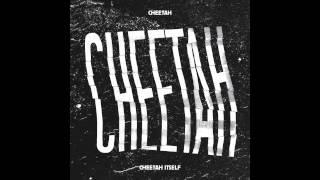 Cheetah - 100Km