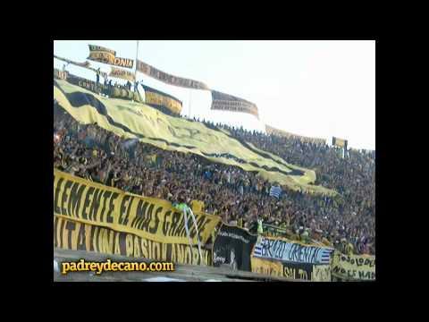 """""""La Copa Libertadores es mi obsesión - Barra Amsterdam vs Caracas"""" Barra: Barra Amsterdam • Club: Peñarol"""