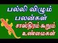 பல்லி விழும் பலன்கள் | சாஸ்திரம் கூறும் உண்மை | Question | Palli vilum palan