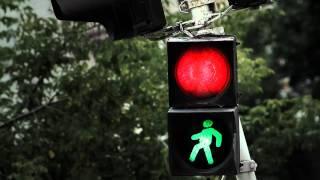 Жириновский, Владимир Вольфович, Запрещенный ролик ЛДПР - про бедных и богатых
