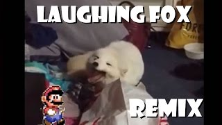 Cute White Fox Laughing - Remix Compilation
