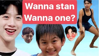 this video will make you fall in love with wannaone