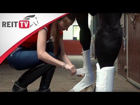 REITTV-Teamreiterin Saskia testet die WoofWare Fesselkopfgamaschen