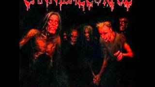 Cannibal Corpse - Skewered from Ear to Eye (720p HD)