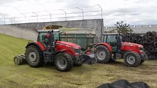 Zemas AG-Silage 2017 Massey Ferguson in Action